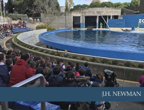 Precioso día en el Zoo Aquarium de Madrid para los alumnos de 2º de Primaria